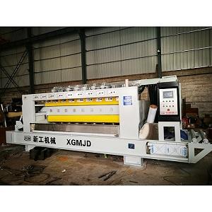 Automatic Litchi-Surface Processing Machine