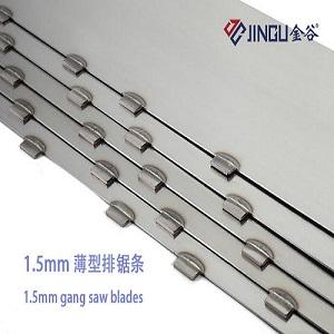 Jingu segments and blades of gang saw
